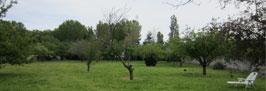 Calme et détente dans nos gites des pyrénées-Orientales  proche de Saint-cyprien dans le 66